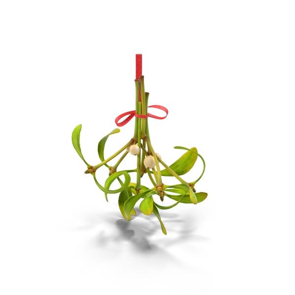 Mistletoe 03 Object