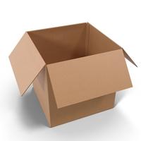 Open Cardboard Box Object