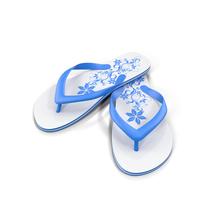 Flip-flops Object