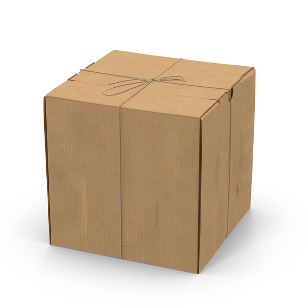 Square Cardboard Box with Twine Object