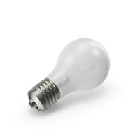 Matte Light Bulb Object