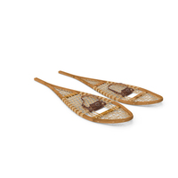 Snow Shoes Object