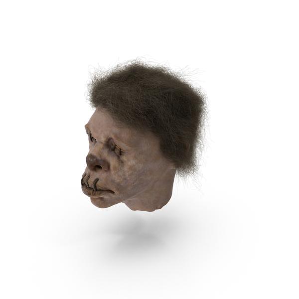 Shrunken Head Object